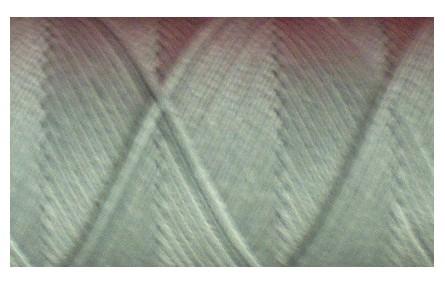 Hilo algodón encerado plano Gris