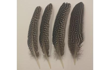 Pluma vetas Blanca -Negra 150mm