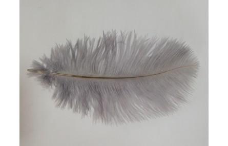 Pluma Avestruz 180mm Gris
